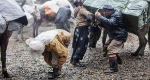 مرگ یک کولبر در مرز سردشت بر اثر سرما و یخ زدگی