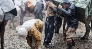 ماموران مرزبانی ایران یک کولبر را کشتند، دو کولبر دیگر زخمی شدند