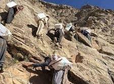 کشته و زخمیشدن 7 کولبر در مناطق مرزی ارومیه، اشنویه، سردشت و سقز